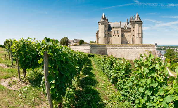 Vinos De Valle Del Loira